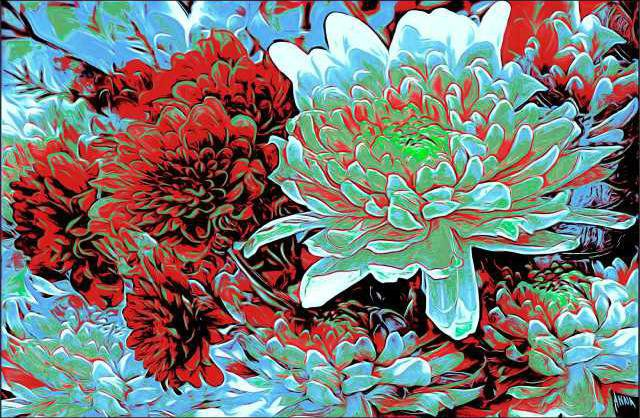 Anna Barber2c Chrysanthemums2c digital print
