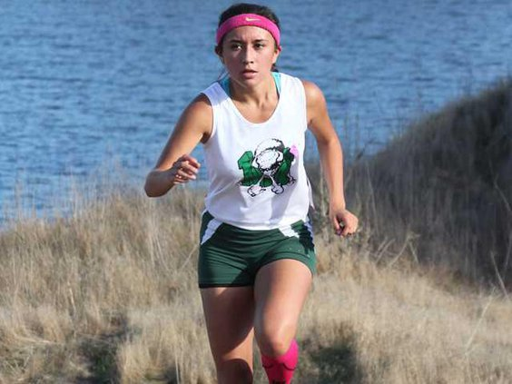 XC--SJS subsection meet file pic