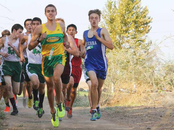 All-Area-Boys-Cross-Country-pic-LT