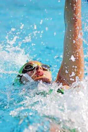 SWM-Dolphins-backstroke-2-6-17-LT
