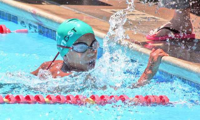 swim-Dolphins-file