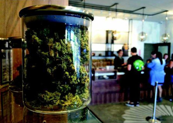 medical marijuana dispensary weed pot