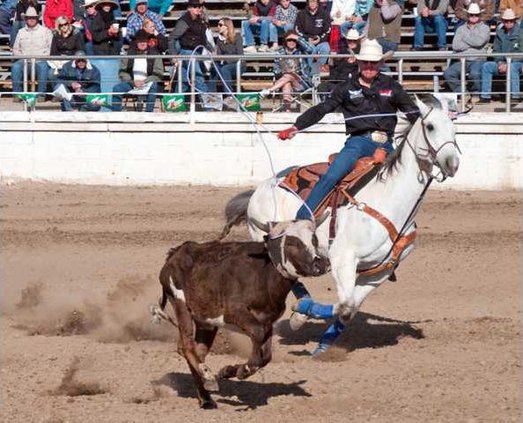 4-14 RODEO-BRAZILE