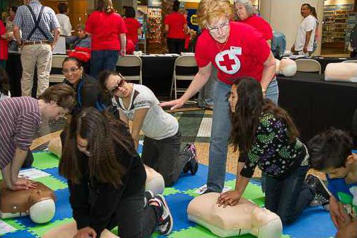 local red cross pic