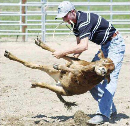 0803 Rodeo Farquer