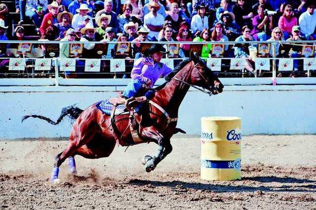 Rodeo 11-CUT 2