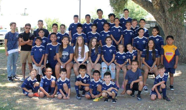Soccer Wrap