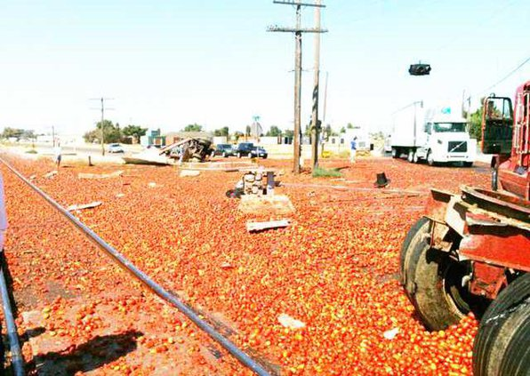 tomato pic