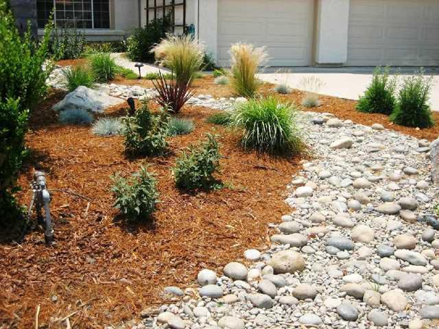 City To Offer Workshop On Drought Tolerant Landscaping Ceres Courier