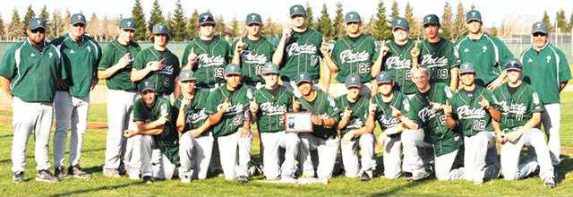 Pitman baseball pic