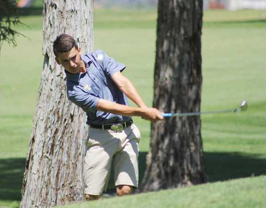 Turlock Golf