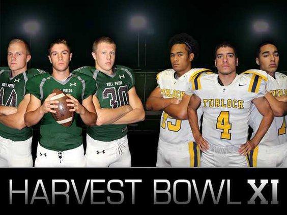 Harvest Bowl graphic