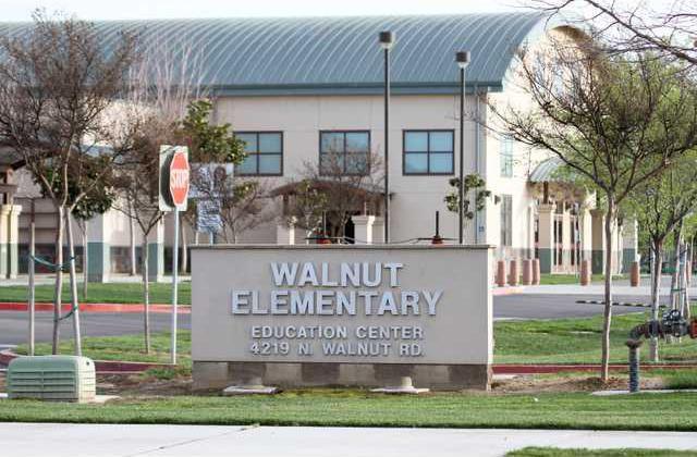 Walnutschool