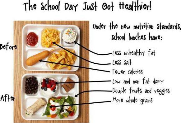 school lunch graphic