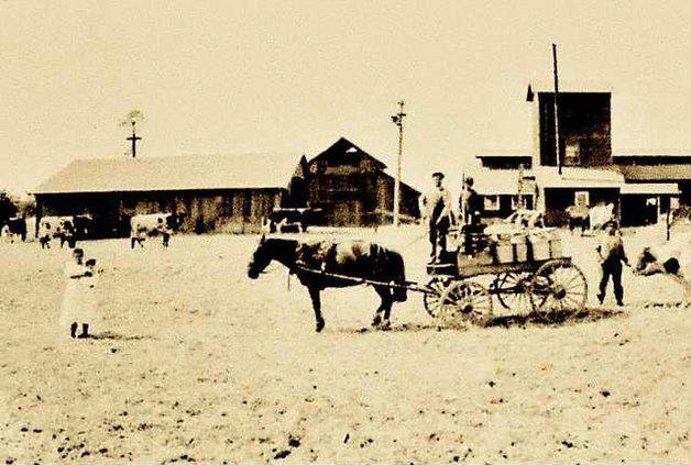 Union Road Dairy Farm about 1913 DSC 1461 copy