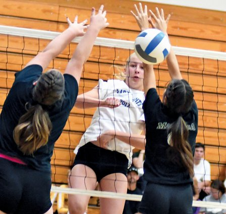 Bulletin volleyball 2018