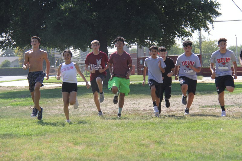 delhi high cross country