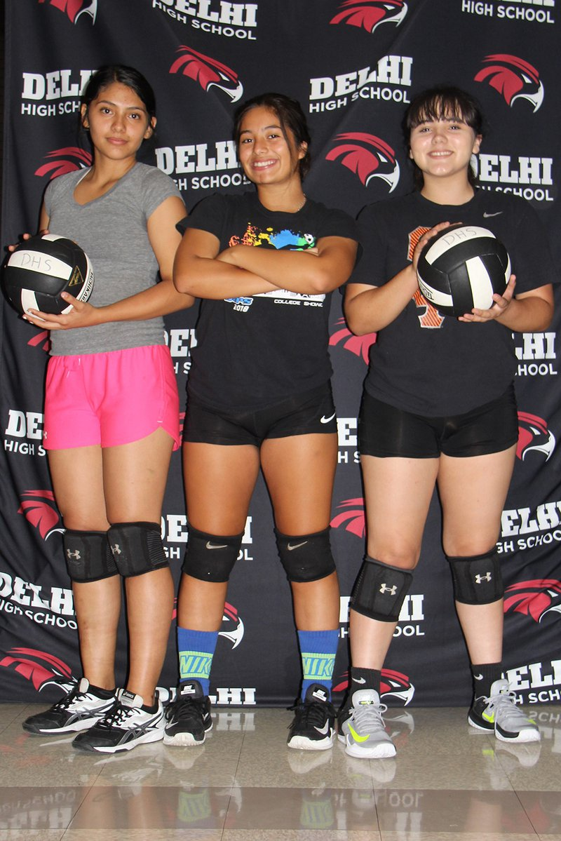 delhi volleyball team