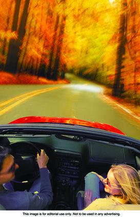 Leaf safety pix.jpg
