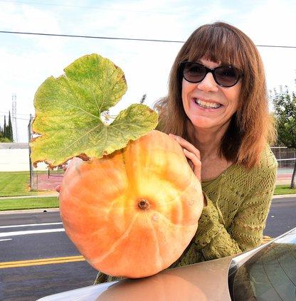 Beattie pumpkin DSC_0760.jpg