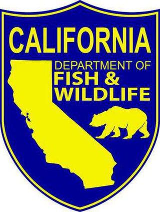 fish and wildlife logo