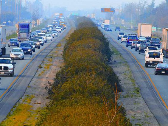 freeway TOP copy