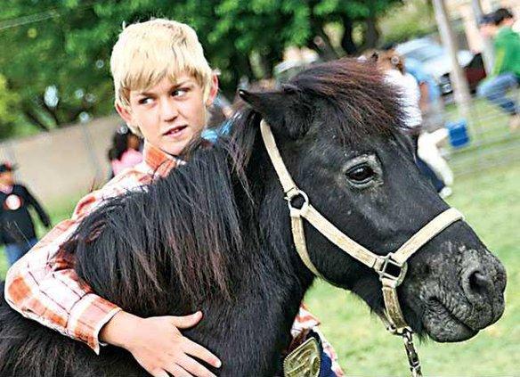 use-horseSamuelHorseZorro