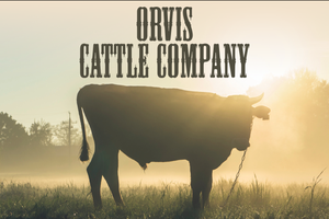 5581-orvis-cattle.png