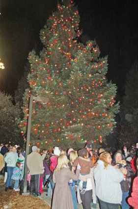 RIPON--Tree-Lighting-Pic-6a