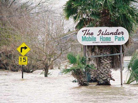 FloodsRose 4