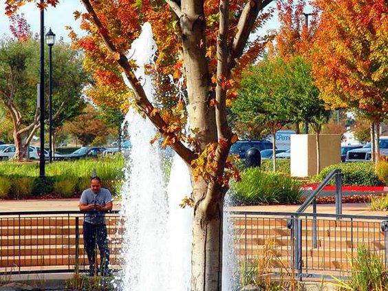 fall pix