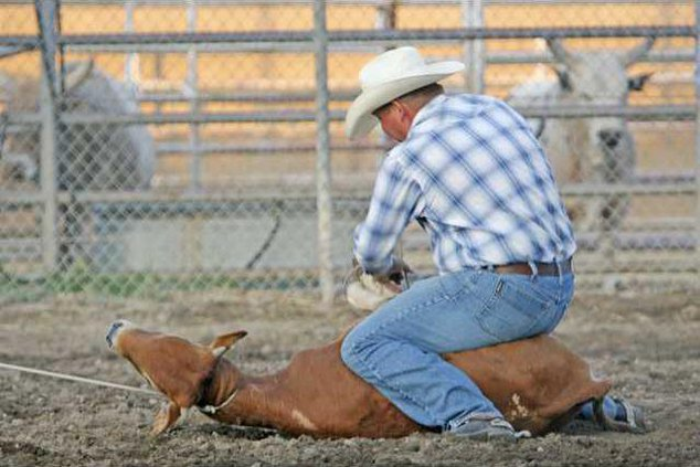 rodeo-pic1