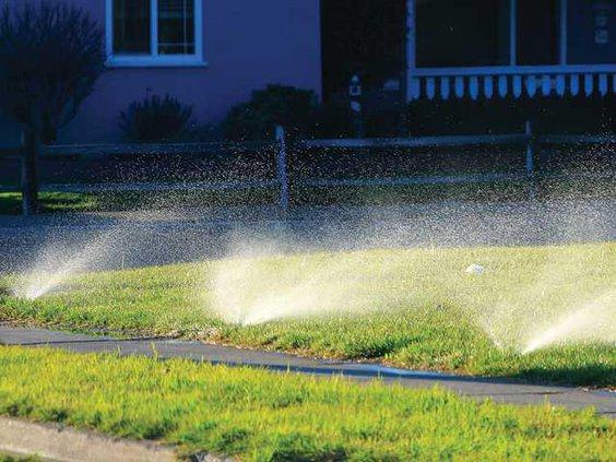 water lawn LT