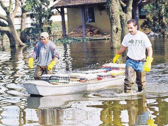 FloodsRoseColumn 51 lt copy