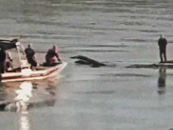 River Rescue DSC 7198