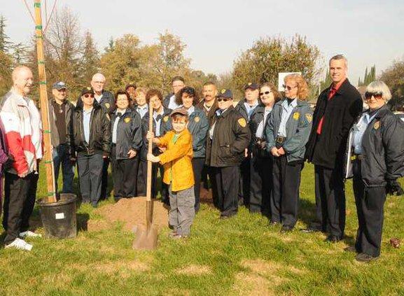 Tree Memorial DSC 3725