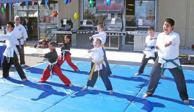 pic sears-karate-1a
