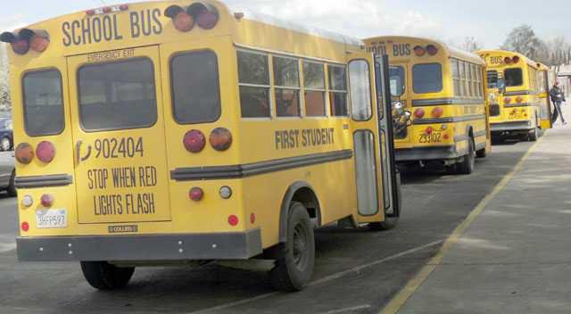 pic special-ed-buses