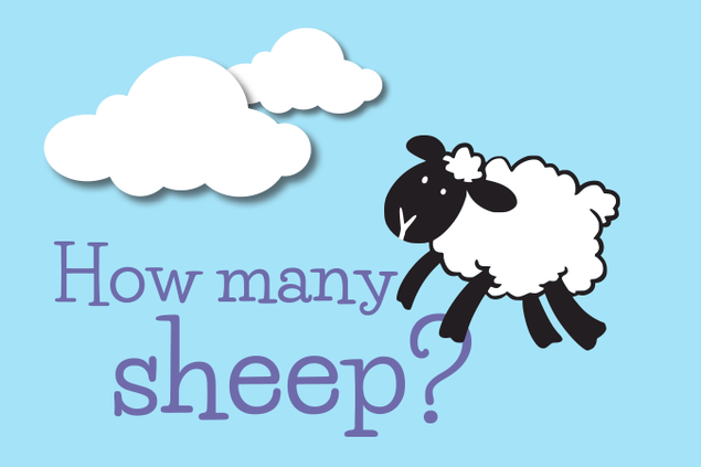 5596-sheep.png