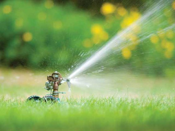 Lawn-watering-LT