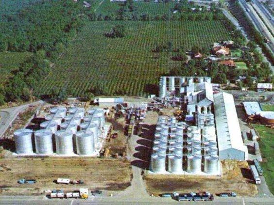 delicato-vineyards