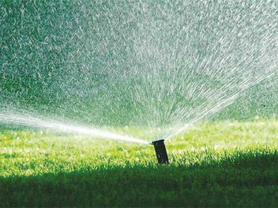 watering-lawn-LT