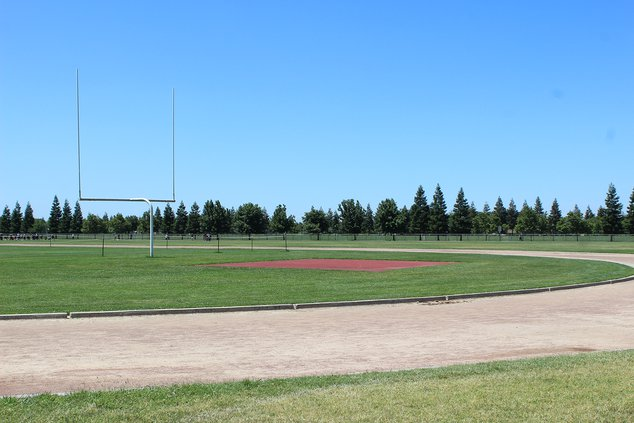 Pitman High field