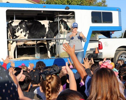 Dairy classroom1.jpg