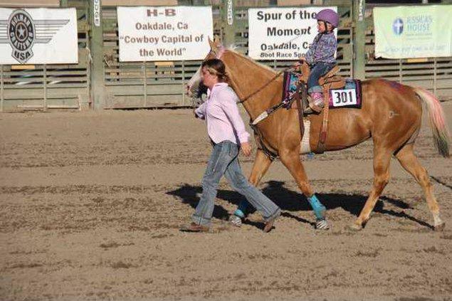 horse pic 1