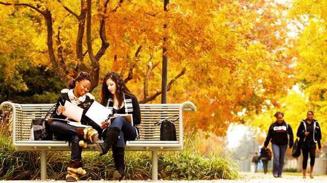 college pic1