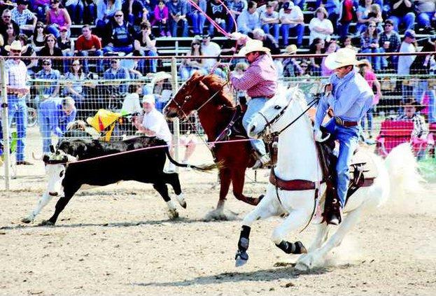 Rodeo 8-CUT