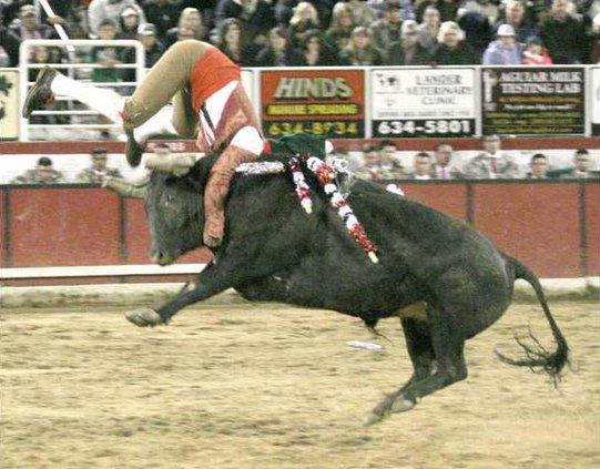 bullfighting pic3