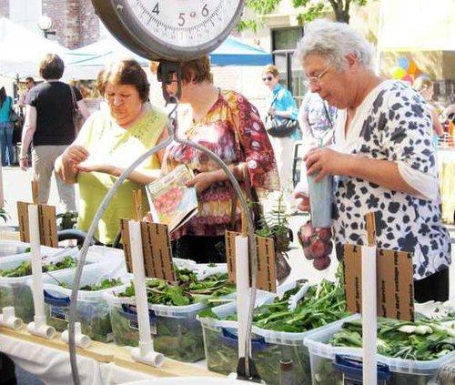 farmers market seniors