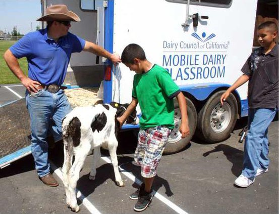 mobile dairy pic2